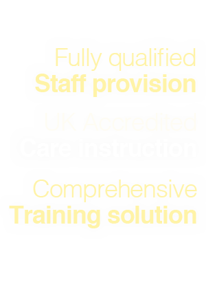 healthcare training providers